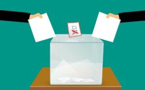 LITUANIA: Equilibrio Tra Pubblicità E Privacy Durante La Pubblicazione Di Dati Sui Candidati