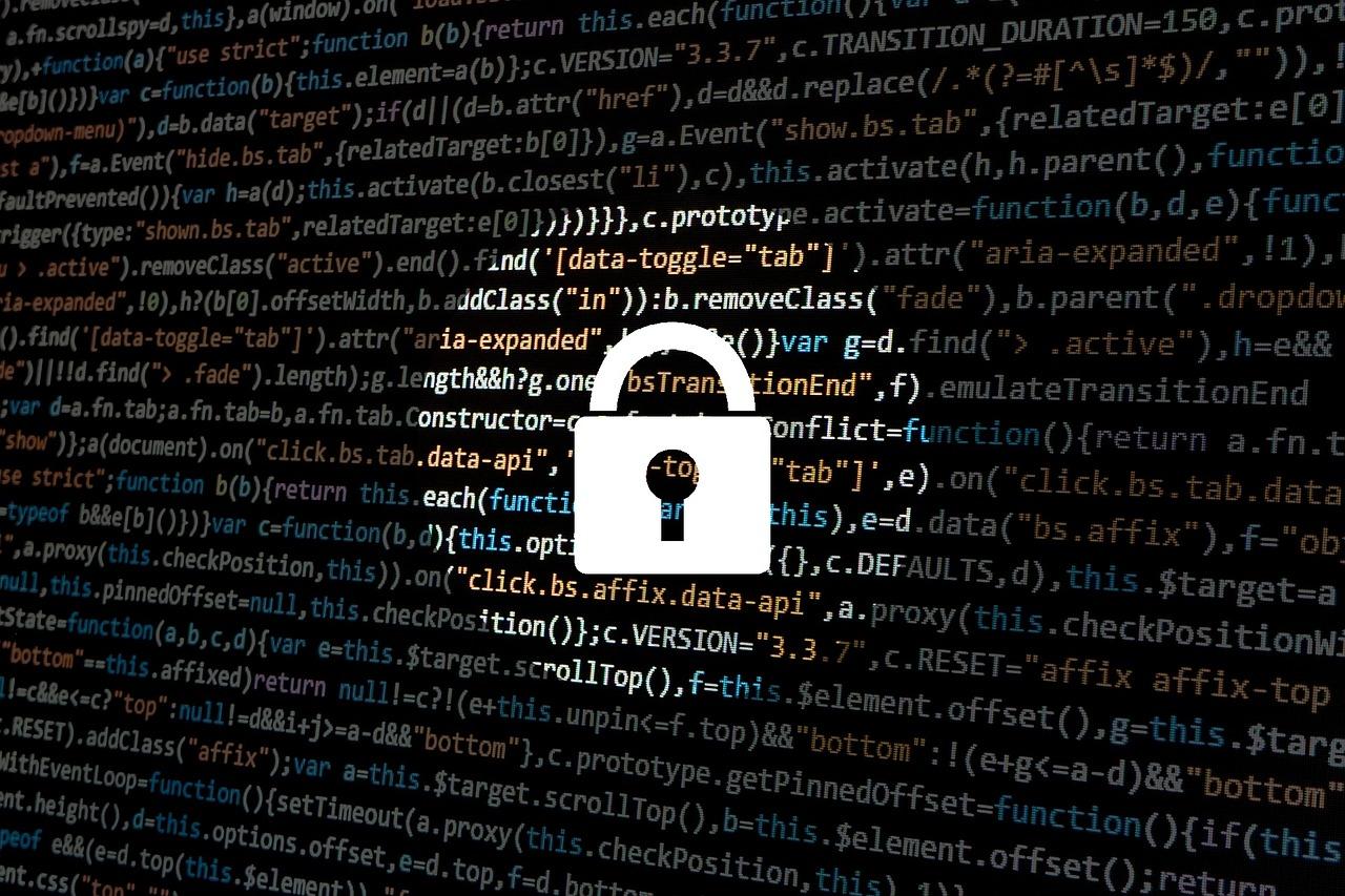 DALL'AUTORITA' PER LA PROTEZIONE DEI DATI DELLA DANIMARCA: Quale Grado Di Crittografia è Sufficiente?