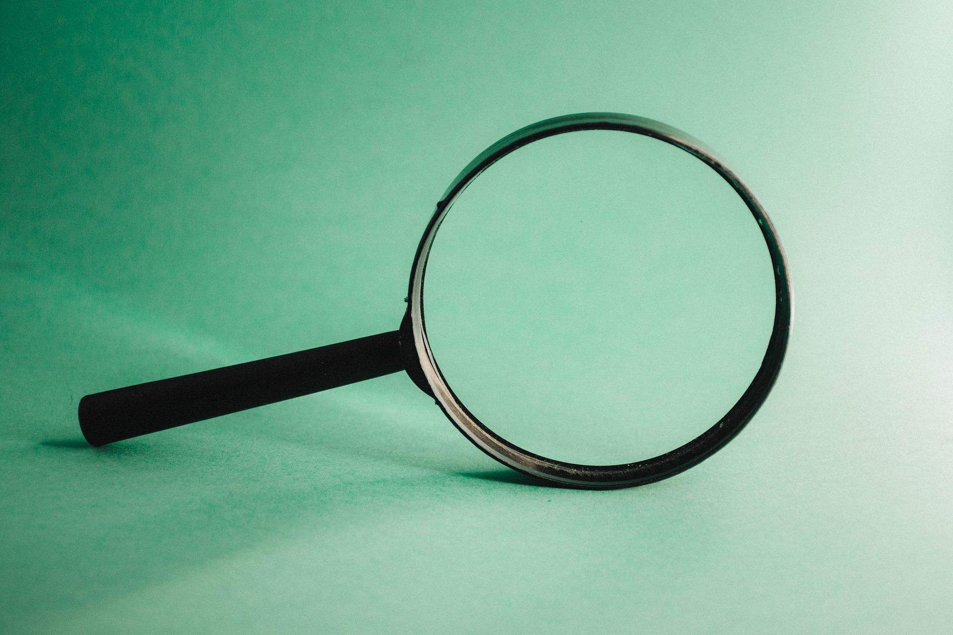 DALL'AUTORITA' PER LA PROTEZIONE DEI DATI DELLA DANIMARCA: Supervisione Dei Consulenti Comunali Per La Protezione Dei Dati