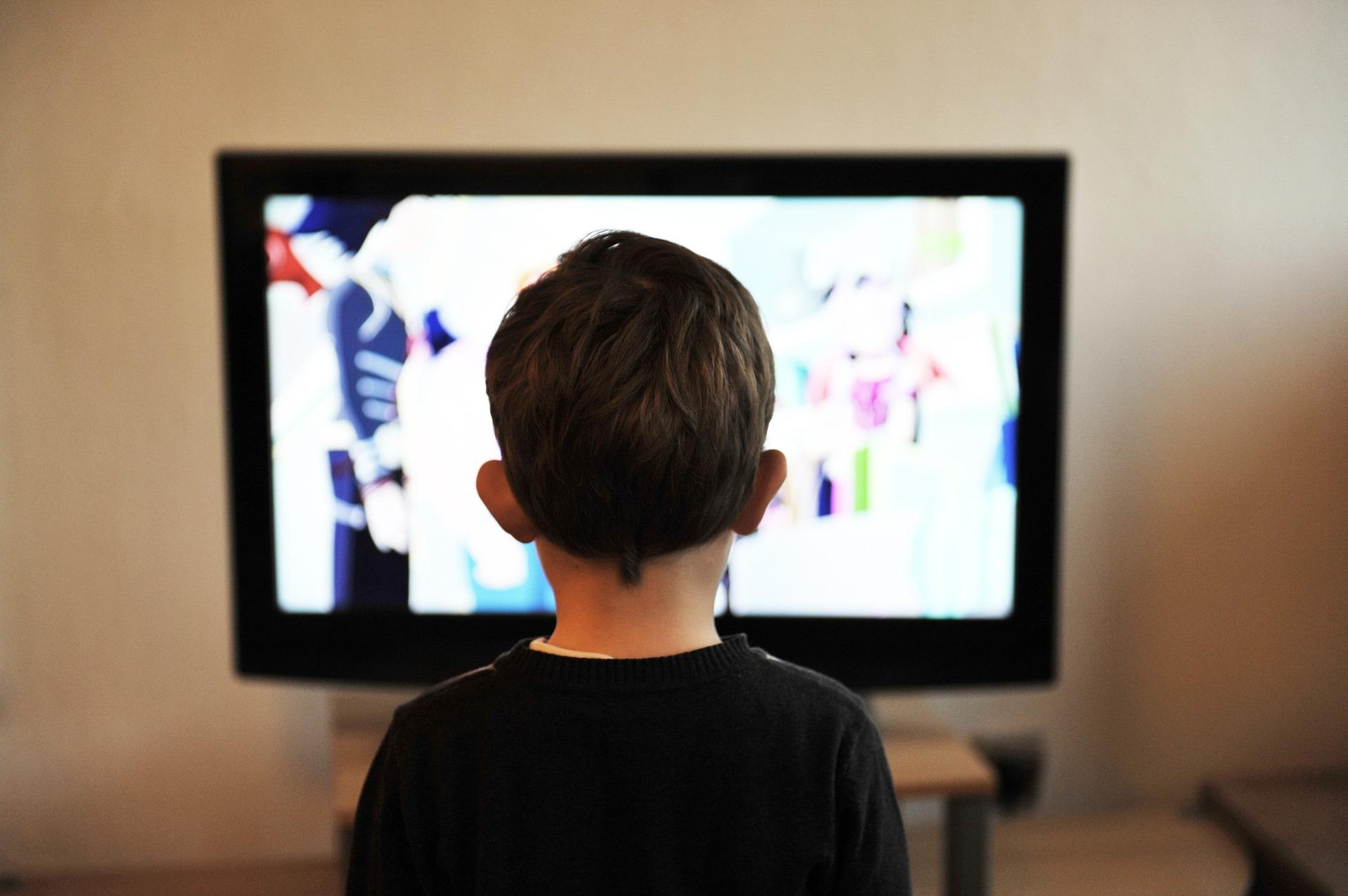 DALL'AUTORITA' PER LA PROTEZIONE DEI DATI DELLA SLOVENIA: Il Consiglio D'Europa Chiede Di Rafforzare La Protezione Della Privacy Dei Bambini Nell'ambiente Digitale